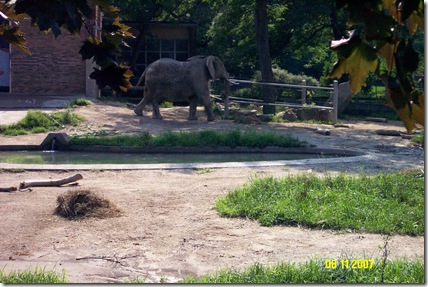 Cleveland Zoo Expands Elephant Area (2/2)