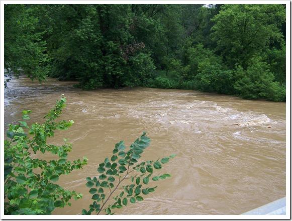 River near Pleasant Hill Dam (1)
