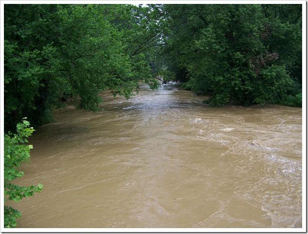River near Pleasant Hill Dam (2)