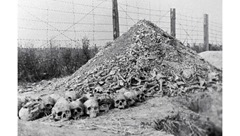 death camps